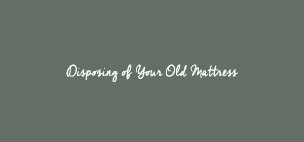 Custom Graphic for Guide To Disposing of Your Old Mattress