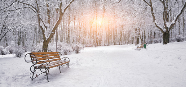 Image of a wintry park with snow