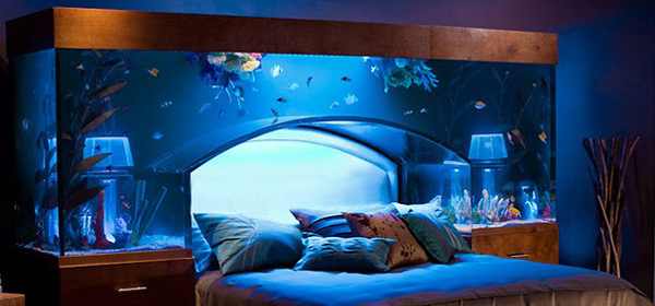 Top 5 bedroom decorating ideas guide me to bed guide for Fish tank bedroom ideas